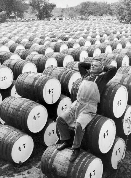 Cyprus Wall Art - Photograph - Production Of Sherry In Cyprus In 1959 by Keystone-france