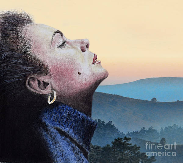 Leading Actress Wall Art - Mixed Media - Profile Portrait Of Liz Taylor At Sunset by Jim Fitzpatrick