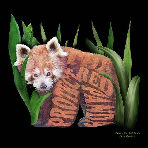 Wall Art - Mixed Media - Protect The Red Panda by Carol Cavalaris