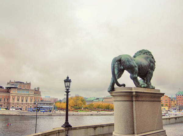 Photograph - Protector Of Stockholm by JAMART Photography