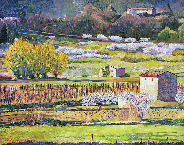 Painting - Bordeaux Vineyards In Spring by David Lloyd Glover