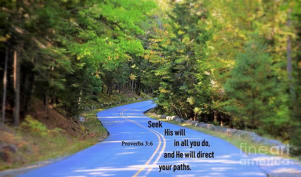 Photograph - Proverbs 3 6 by Patti Whitten