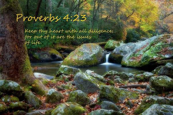 Proverb Photograph - Proverbs Four Twenty Three by Harriet Feagin