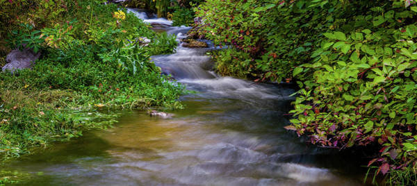Photograph - Provo Deer Creek by TL Mair