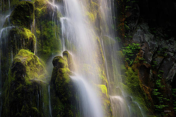 Photograph - Proxy Falls Textures And Light by Leland D Howard