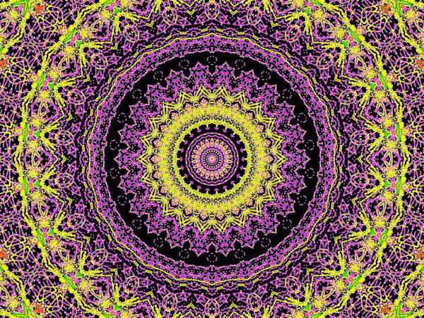 Digital Art - Psychedelic Kaleidoscope Abstract Pattern 10 by Artist Dot