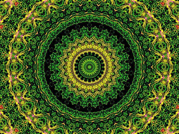 Digital Art - Psychedelic Kaleidoscope Abstract Pattern 11 by Artist Dot