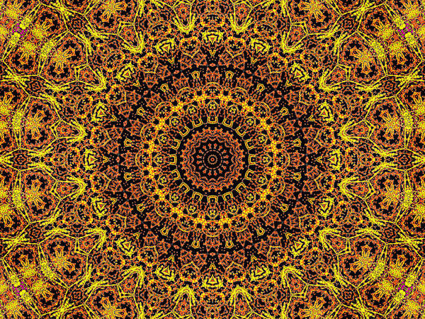 Digital Art - Psychedelic Kaleidoscope Abstract Pattern 15 by Artist Dot