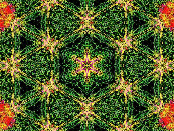 Digital Art - Psychedelic Kaleidoscope Abstract Pattern 7 by Artist Dot