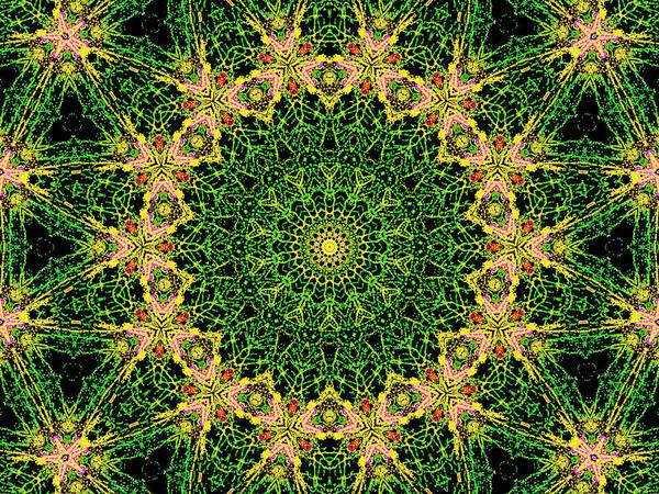 Digital Art - Psychedelic Kaleidoscope Abstract Pattern 8 by Artist Dot