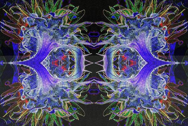 Wall Art - Photograph - Psychedelic  Mandela-2 by Paul W Faust - Impressions of Light