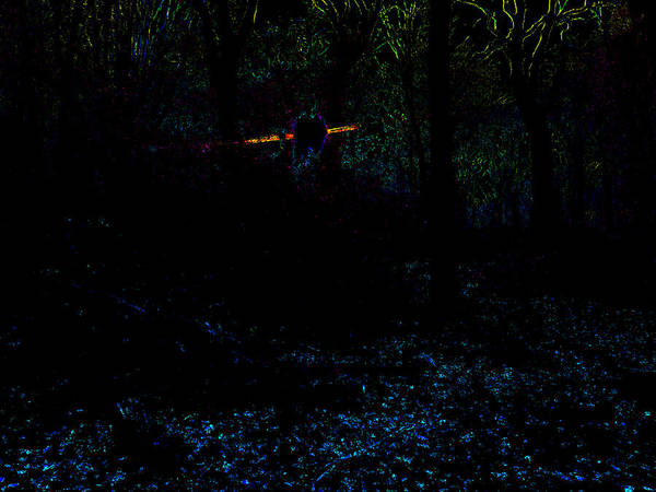 Photograph - Psychedelic Night Forest Trees In Highgate Woods 611 by Artist Dot