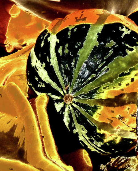 Photograph - Psychedelic Winter Squash 3 by Paul Croll