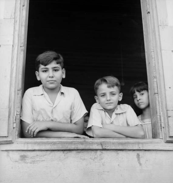 Greater Antilles Photograph - Puerto Rican Children by Three Lions