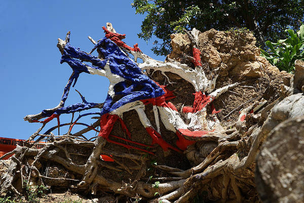 Photograph - Puerto Rico - The Roots Of The Flag by Richard Reeve