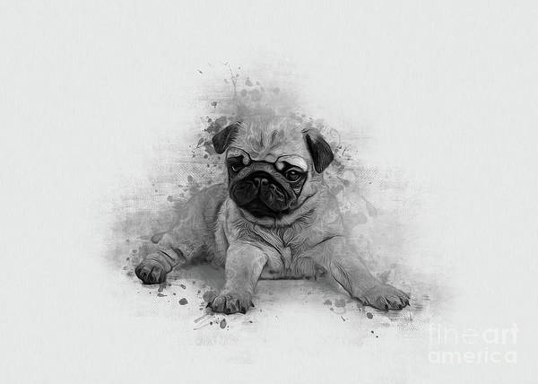 Digital Art - Pug Art by Ian Mitchell
