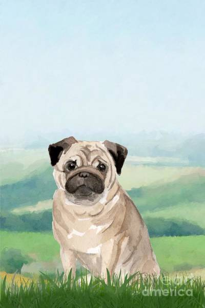 Pedigree Painting - Pug by John Edwards
