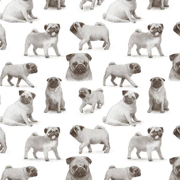 Wall Art - Drawing - Pug Pattern by Eric Fan