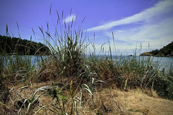 Photograph - Puget Sound Deception Pass by Ed  Riche