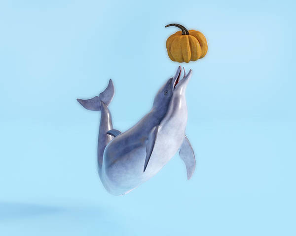 Wall Art - Digital Art - Pumpkin And Her Ball  by Betsy Knapp