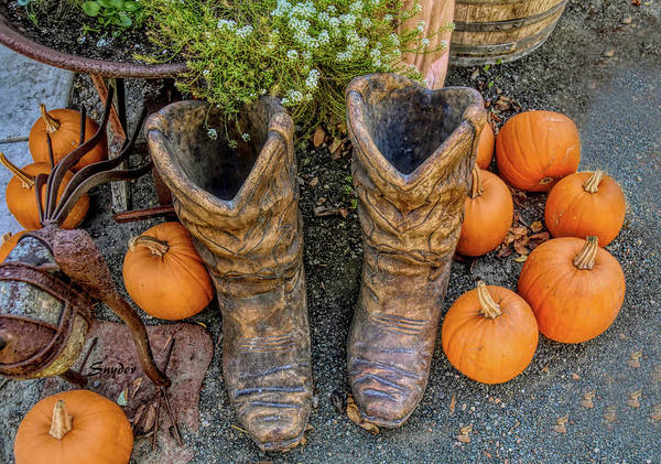 Photograph - Pumpkins And Boots  by Floyd Snyder