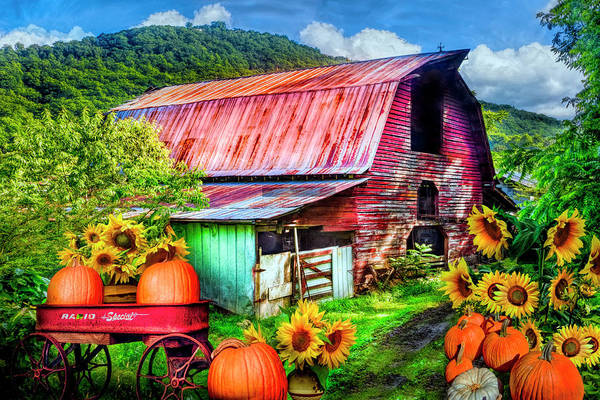 Wall Art - Photograph - Pumpkins In The Sunflowers by Debra and Dave Vanderlaan