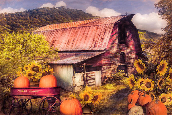 Photograph - Pumpkins In The Sunflowers Painting by Debra and Dave Vanderlaan