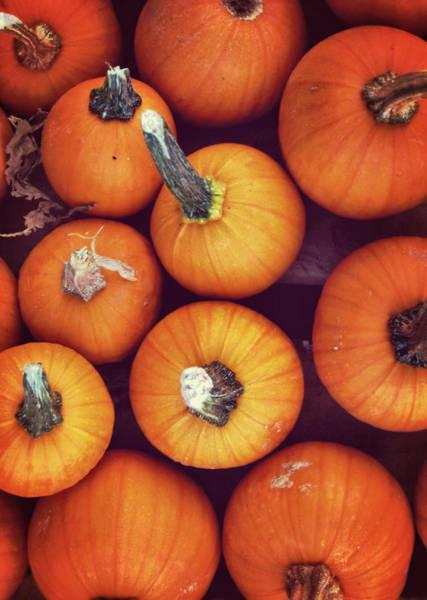 Photograph - Pumpkins by JAMART Photography