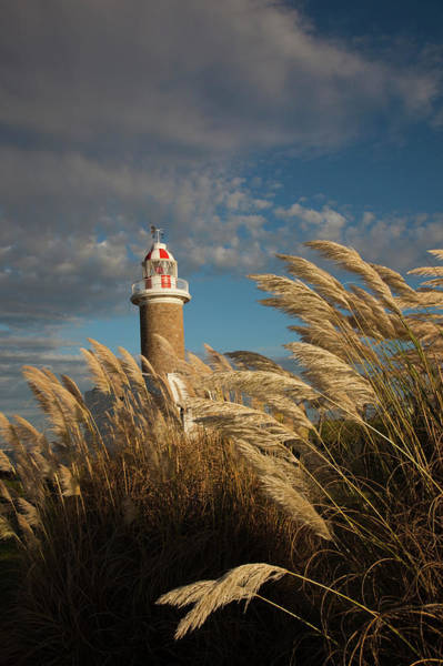 Montevideo Wall Art - Photograph - Punta Brava Lighthouse, Montevideo by Walter Bibikow
