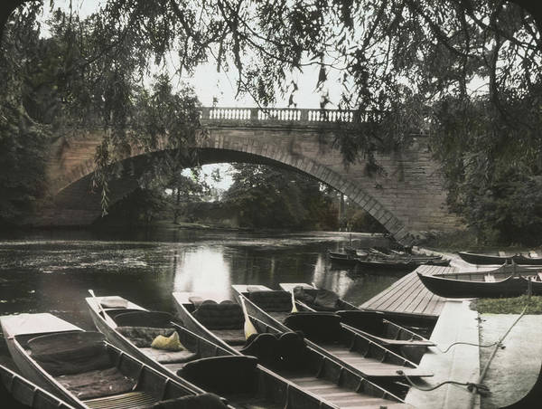 Warwickshire Photograph - Punts By Bridge by Epics