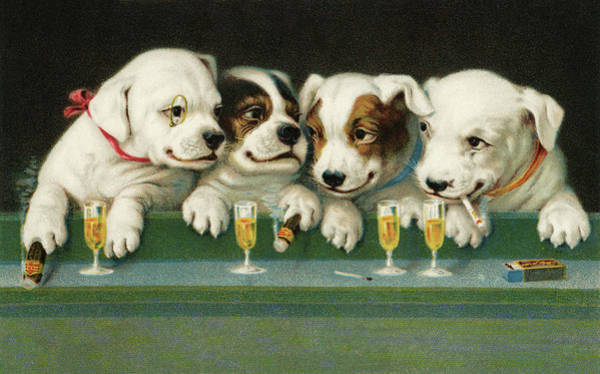 Lager Photograph - Puppies Drinking And Smoking by Graphicaartis