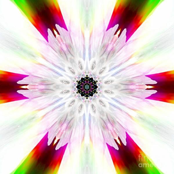 Digital Art - Pure And Brilliant  by Rachel Hannah