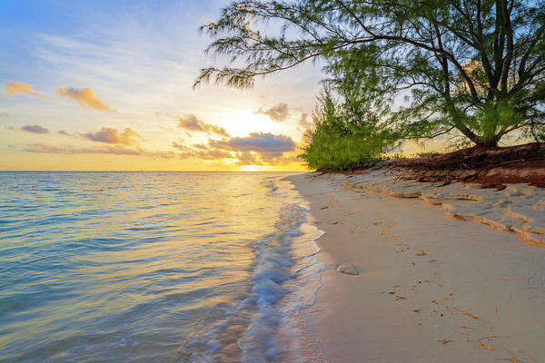 Caribbean Wall Art - Photograph - Pure Nature by Chad Dutson