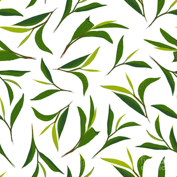 Herbal Wall Art - Digital Art - Pure Tea. Botanical Style Seamless by Irache
