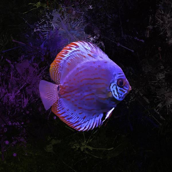 Digital Art - Purple Discus Portrait by Scott Wallace Digital Designs