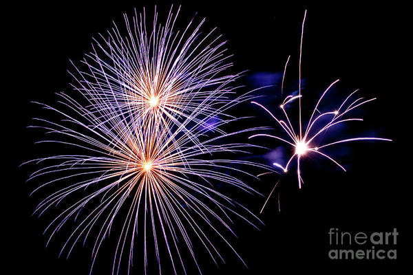 New Years Day Photograph - Purple Fireworks by Delphimages Photo Creations
