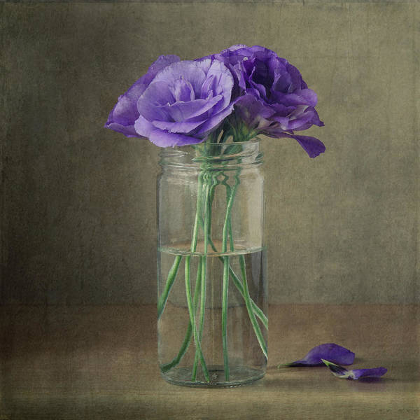Wall Art - Photograph - Purple Flowers In A Jar by Gergana Chakarova