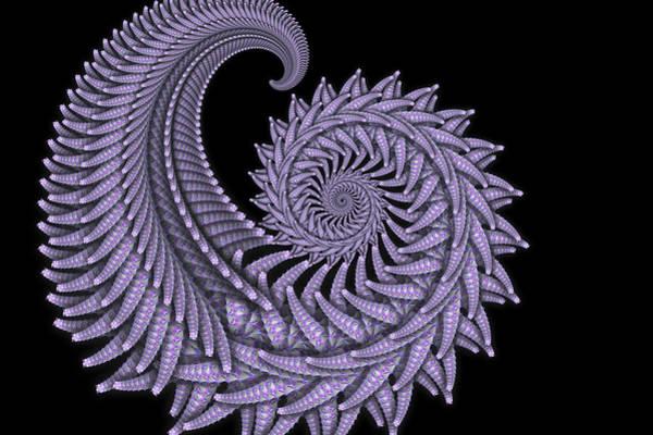 Digital Art - Purple Fossil Fractal by Scott Lyons