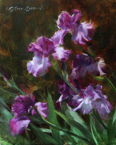 Botanic Painting - Purple Irises by Anna Rose Bain