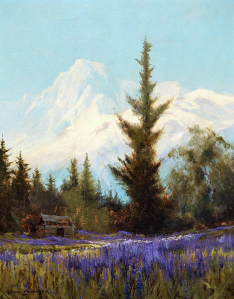 Wall Art - Painting - Purple Lupin, Near Juneau, 1927 by Sydney Laurence