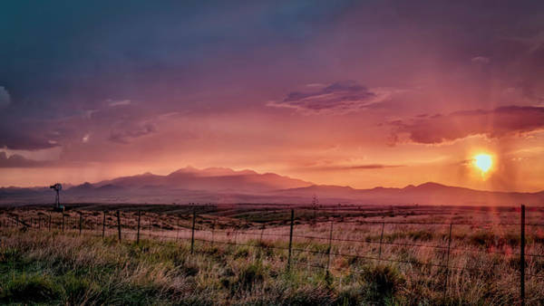 Photograph - Purple Mt Majesty by Laura Hedien