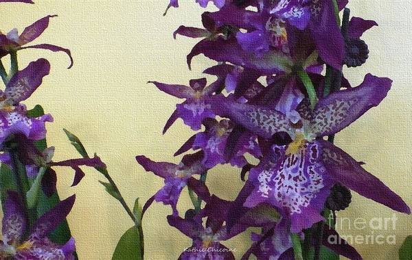 Digital Art - Purple Orchids by Kathie Chicoine
