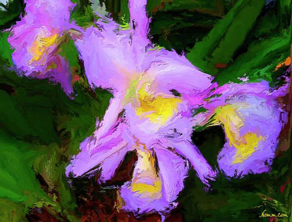 Digital Art - Purple Orchids by Rein Nomm