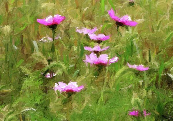 Mixed Media - Purple Wild Flowers Field by David Dehner