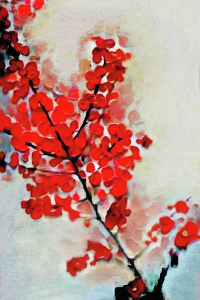 Mixed Media - Pyracantha by Susan Maxwell Schmidt