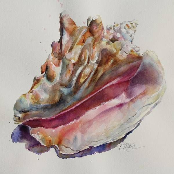 Painting - Queen Conch Shell by Tracy Male