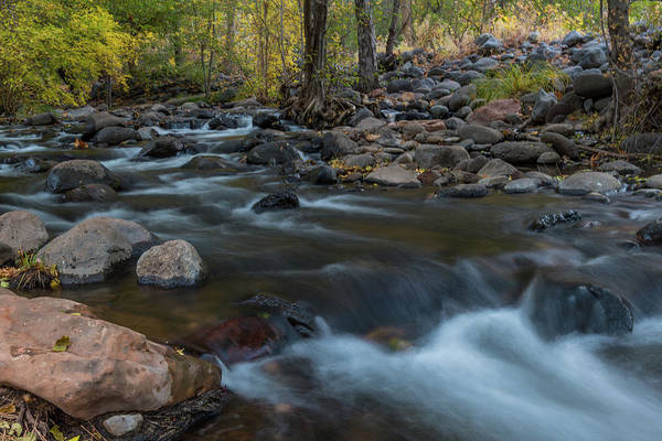 Photograph - Quiet Creek by TM Schultze