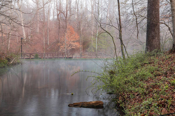 Photograph - Quiet Morning At Crystal Spring Trail by Gregory Ballos
