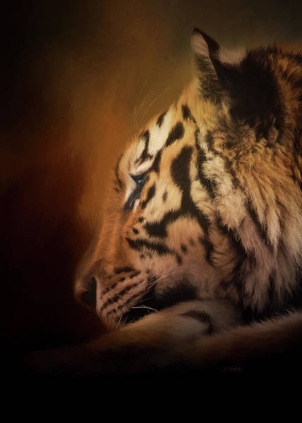 Painting - Quiet Time - Wildlife Art by Jordan Blackstone