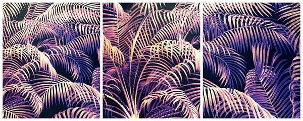 Wall Art - Photograph - Palm Frond Triptych by Jessica Jenney
